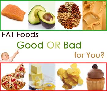 why fat is important in our diet